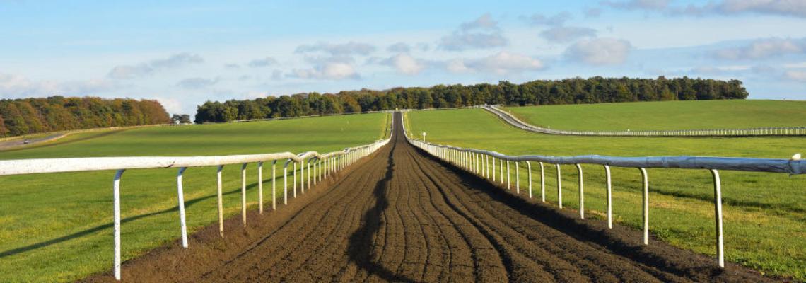 Equestrian Property 2